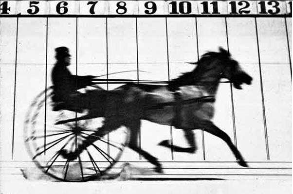 Fotp: Eadweard Muybridge